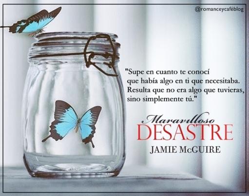 FraseDesastre1
